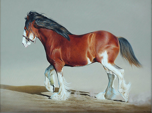 'Power and Grace' Clydesdale horse