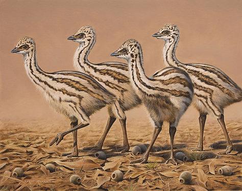 Emu Chicks Card