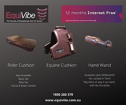 12 Months interest free - Equivibe.jpg