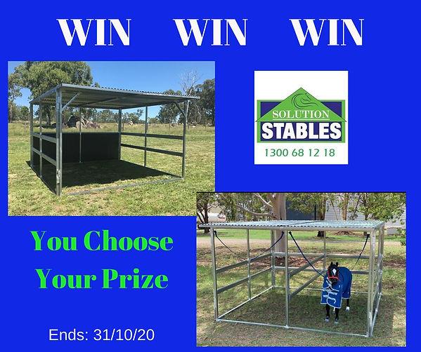 Win Shelter.jpg