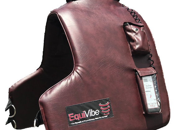 Equine Therapy Cushion