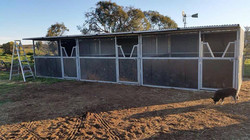 3 Joined Stables with Roof (no yard)