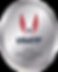 2019_USATF_Sanctioned_Event_Logo.png