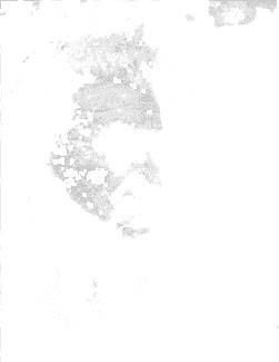 unscharf_ist_schön_Seite_3_Bild_0007.jp