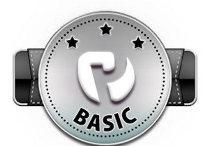 Basic Variante