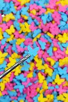 Mariposa Enfocado__edited.jpg