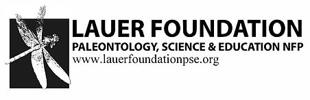 Lauer Foundation Logo - USE THIS.jpg