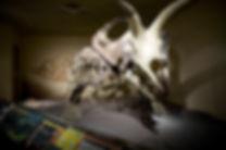 Torosaur2 (1).jpg