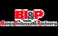 bip_edited.png