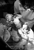 出産撮影・ニューボーンフォトのハレノヒ写真|赤ちゃん撮影2