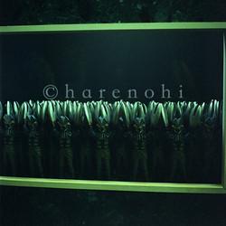 ハレノヒ写真 ムラカミカヨのギャラリー 6