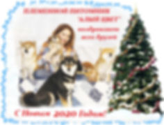 loonapix_1577810096260899003.jpg