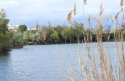 Chillig am Teich die Mittagspause verbringen...