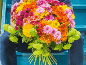 Absatzförderung von Blumen und Pflanzen in Zeiten der Krise