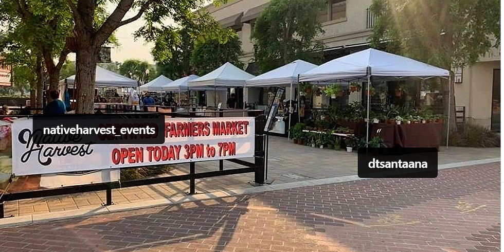 Santa Ana Downtown Farmers Market