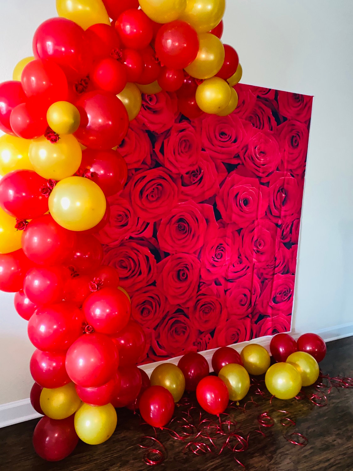 Backdrop (balloons & stand not included)