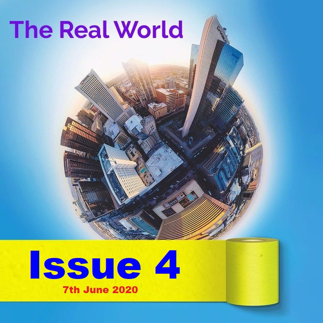 The Real World Issue 4