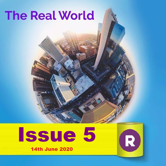The Real World Issue 5