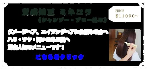 menu_minecora_20210607.png