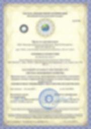 Сертификат-ISO-9001-образец-1 копия.jpg