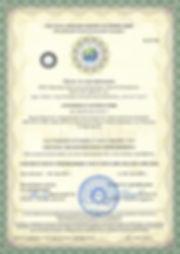 Образец-ISO-3-1-400x551 копия.jpg