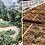 Thumbnail: FINCA TERESA - Mexico                                    PRALINE/TOFFEE/HAZELNUT
