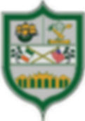 Chicago Parnells GFC Logo