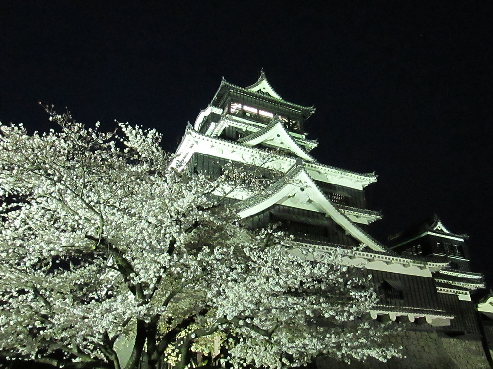 Picture I took 2 years ago (before the earthquake) of Kumamoto castle with cherry blossoms