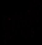 BBJ_Logo_Black.png