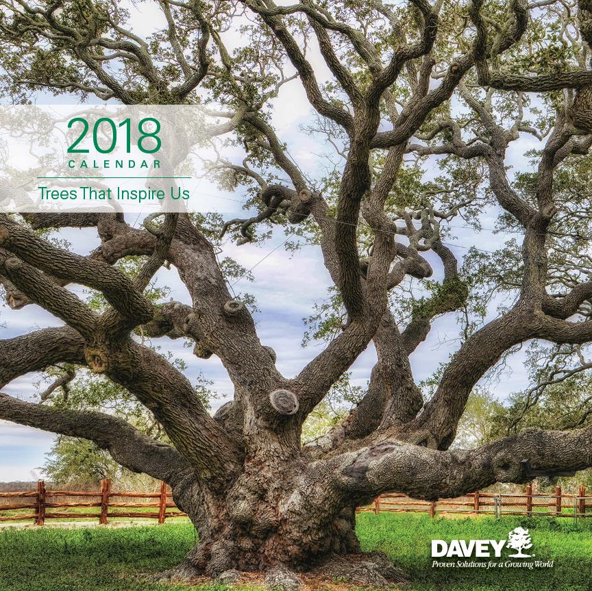 2018_Calendar_FA