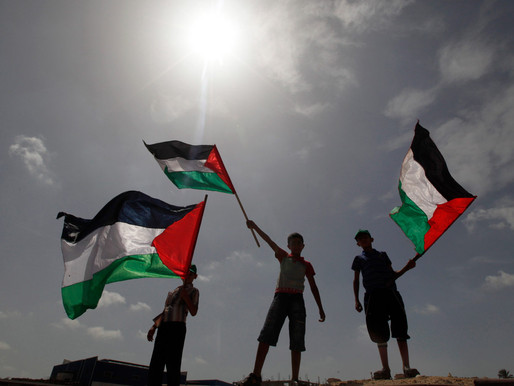 5 Things to do NOW to Support Palestine