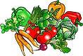 vegetables color.jpg