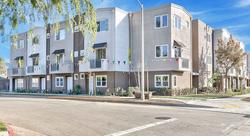 The Collintine Modern Homes