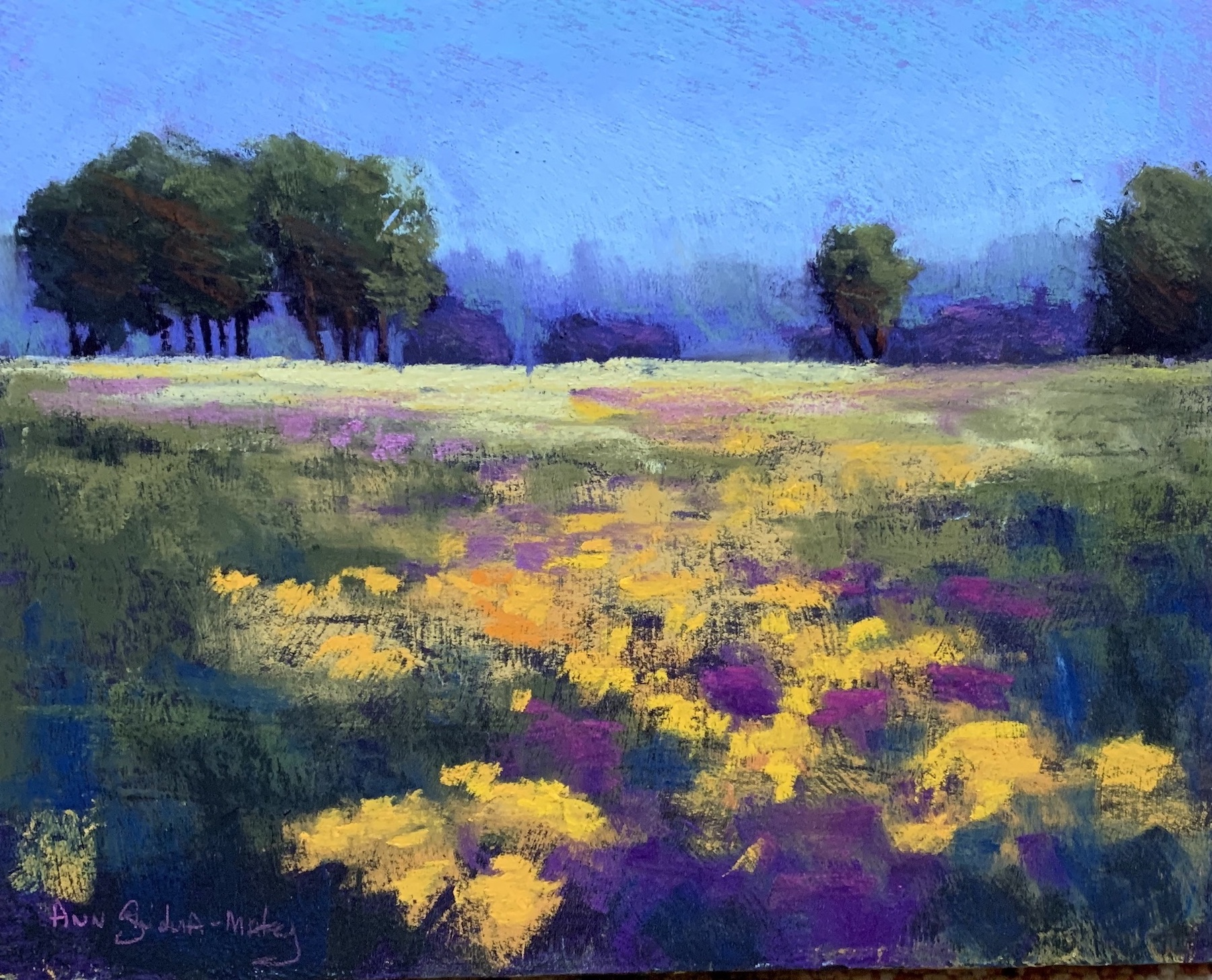 Yellow & Purple Field