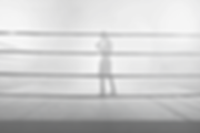 In%20the%20Boxing%20Ring_edited.png
