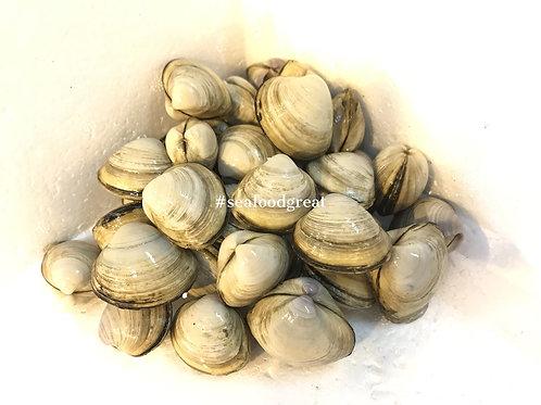 珍珠貝 (半斤) - 節日