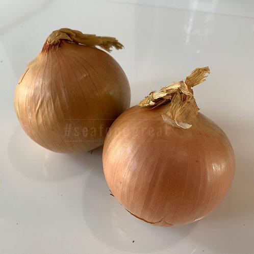 洋蔥 (每個) - 節日