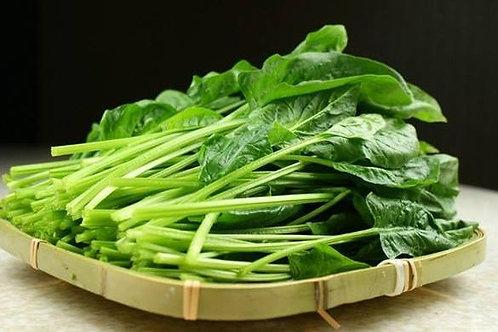 菠菜 (半斤)