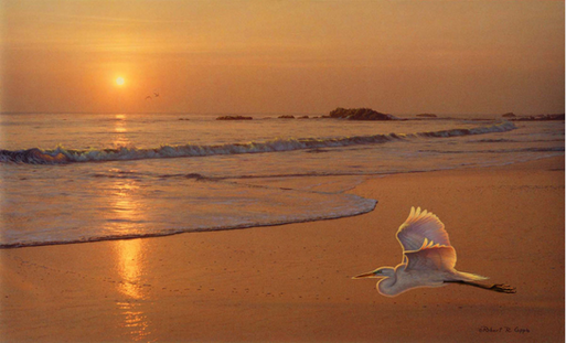 Sailing On Golden Sunlight