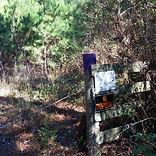 ET - Entrance (111917)3 - Forestry.jpg