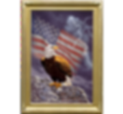 Copple-Guardian of Freedomcomp1.png