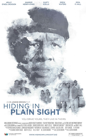 Hiding in Plain Sight - Promotional Post