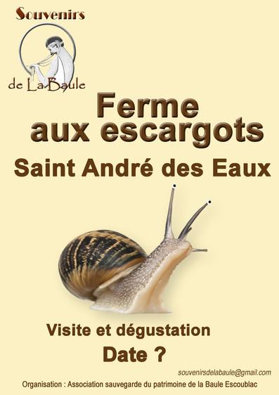 escargots.jpg