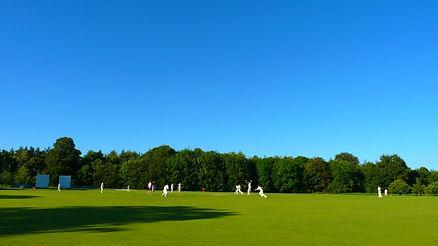village-cricket.jpeg