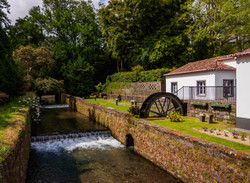 river-in-furnas-on-sao-miguel-island-FTEV6QX