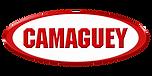 LOGOCAMAGUEY3.png