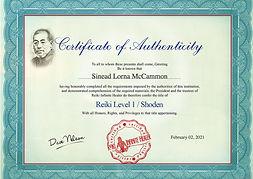 Level 1 Certificate-1.jpg