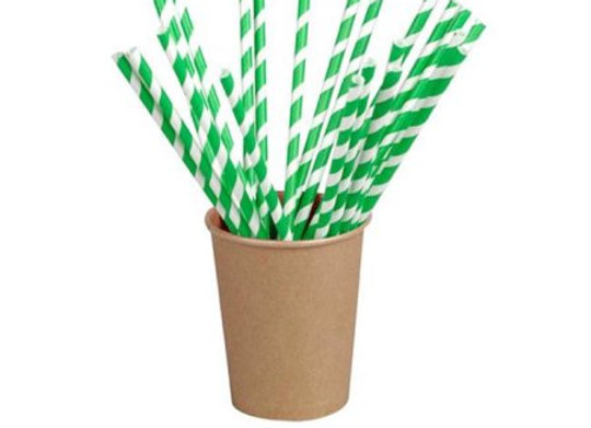 Paper Straws Green Stripes Individually Wrapped, Diameter 6mm - 210mm