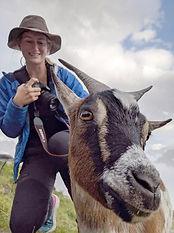 goat_edit.jpg
