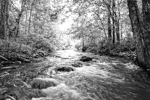 Stream Line Flow